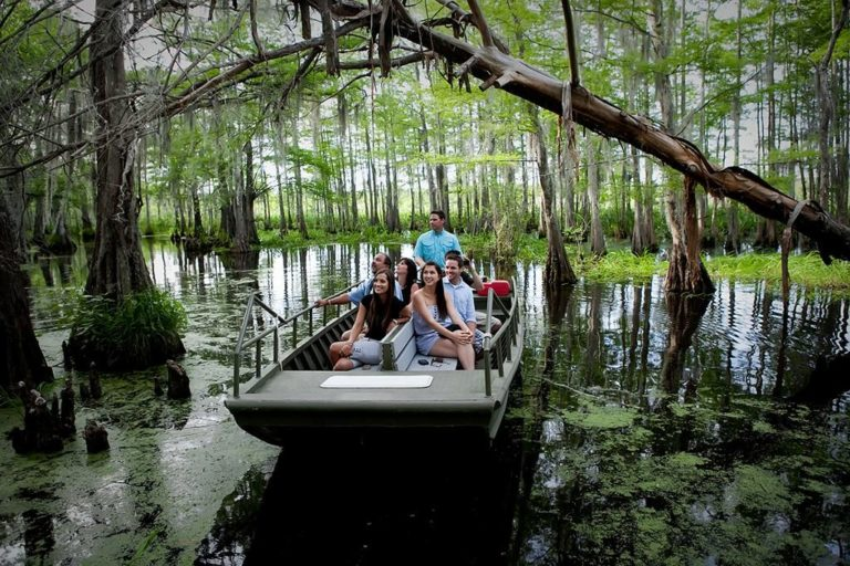 Swamp Tour New Orleans >> Swamp Tours New Orleans Honey Island Swamp